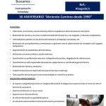 NUEVA OFERTA DE EMPLEO: ABOGADA/O CON EXPERIENCIA EN EXTRANJERÍA